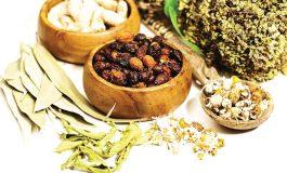 تدابیر تندرستی در فصل پاییز از نگاه طب سنتی ایران