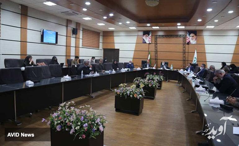 شورای شهر کرمان خواستار تسریع در احداث و ساماندهی آرامستان شد