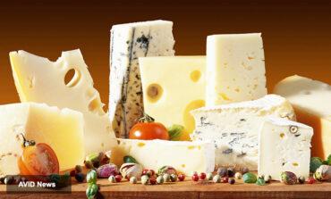 پنیرهای محلی غیرپاستوریزه، تب مالت میآورد