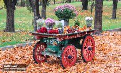 پاییز، خزان، پاییز